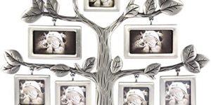 Genealógico Doméstico Creativo Exhibición Decoración