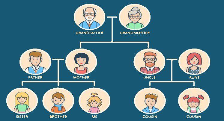 Cómo traducir un árbol genealógico a inglés
