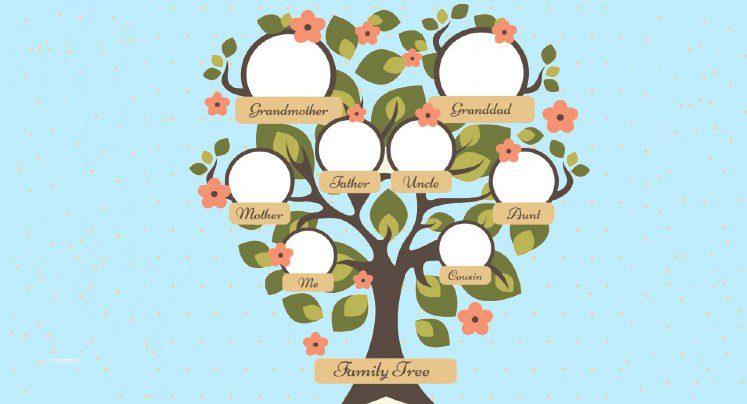 Cómo hacer un árbol genealógico en inglés fácilmente