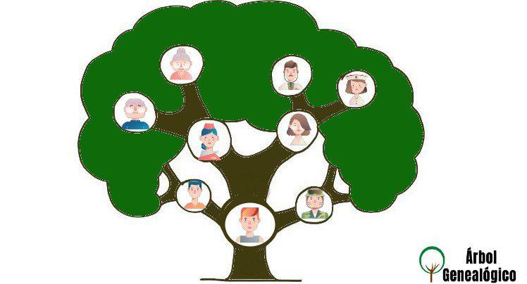 Consejos para realizar un árbol genealógico para niños
